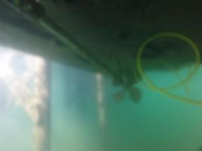 clear water bottom.jpg