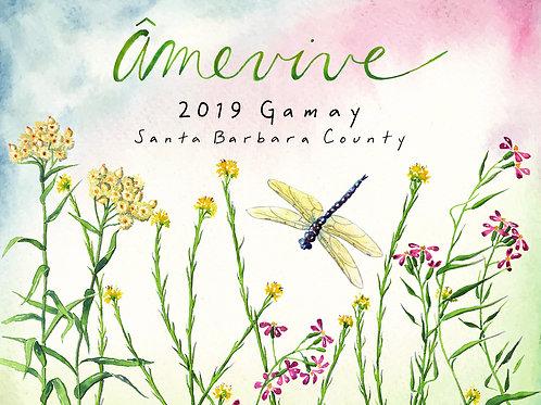 2019 Santa Barbara County Gamay