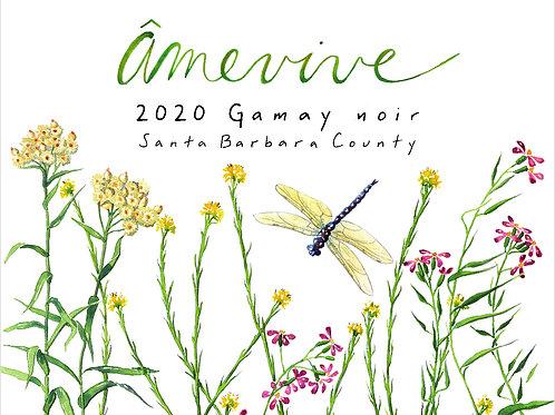 2020 Santa Barbara County Gamay