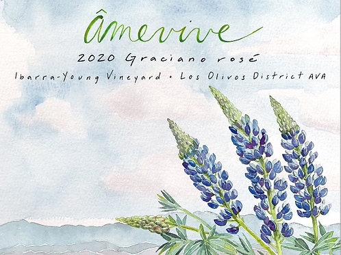 2020 Graciano rosé - Ibarra-Young
