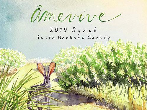 2019 Santa Barbara County Syrah
