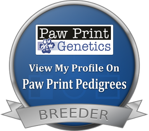 Did you know we health test all of our dogs? Check it out...