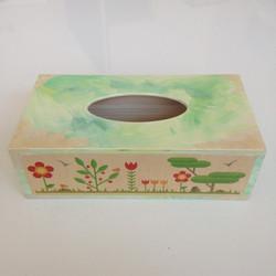 Rectangular Tissue boxes