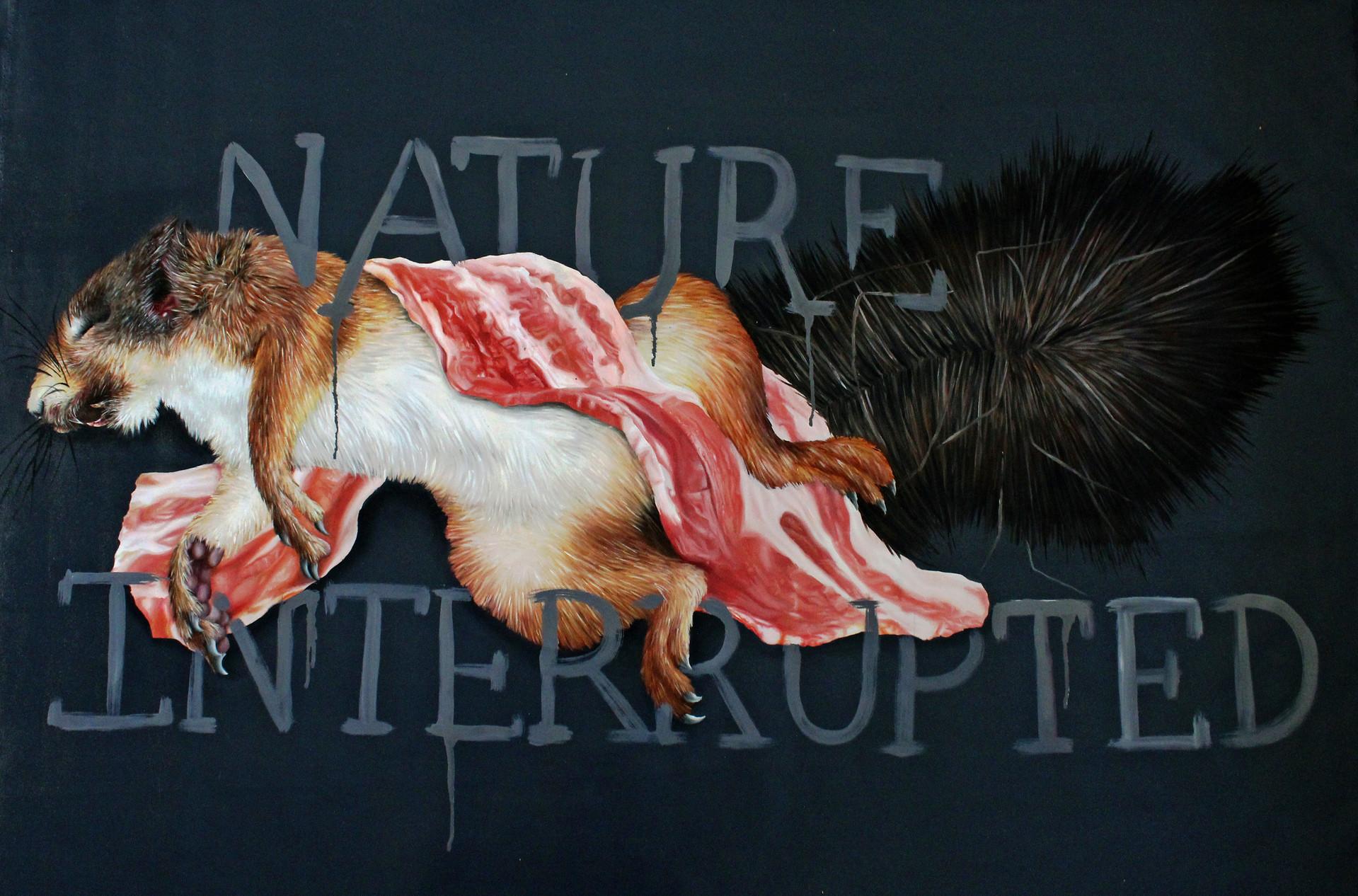 'Nature Interrupted'