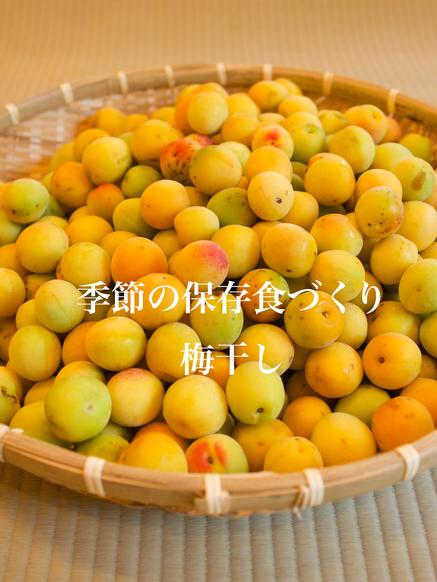 梅干しのコピー.png