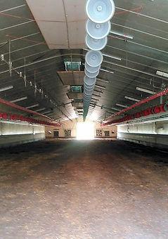 2 deborde nettoyage hangar.jpg
