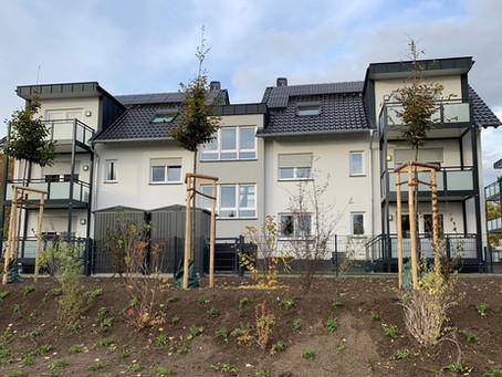 Feldholzinsel - Ein Zuhause für Vögel und Igel gefördert durch das Land Hessen