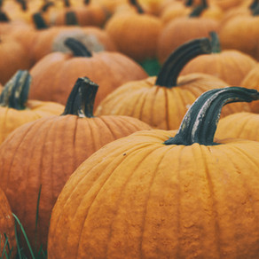 PYO Pumpkin Patches Near Crowborough