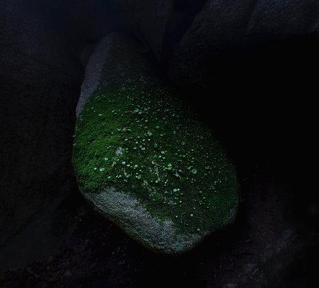 Kámen/ The Stone