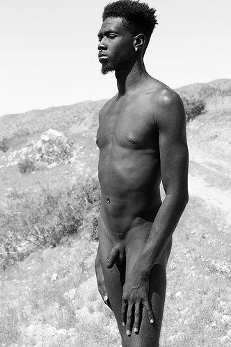Nubian Prince