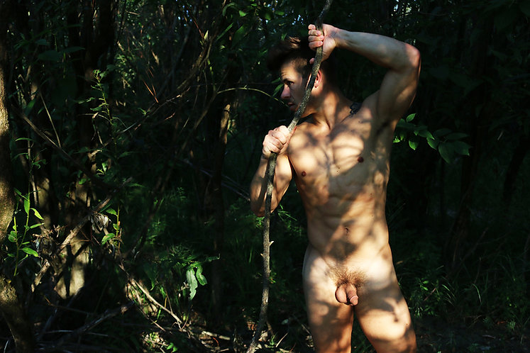 Pausing in the Forest