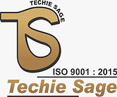 techiesage_ludhiana_mullanpur_9988690713_digitalmarketing_graphicdesigning_wedesigning_ani