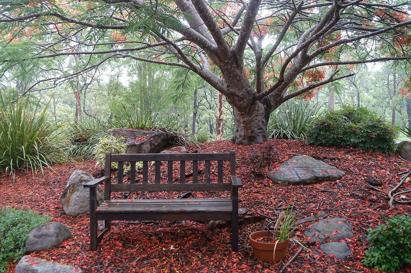 bench-577825_1920.jpg