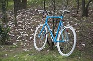 bike-564951.jpg