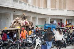 Amritsar Traffic Jam