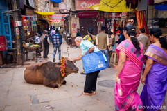 In the streets of Varanasi