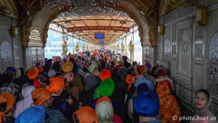 Amritsar Golden Temple, waiting on line
