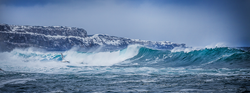 Middle-cove-wave-(1-of-1).png