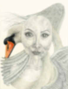 Cerys Knighton artist, Sleep Well, swan, bird art, feathers, pointillism, decay, portrait, dotwork, tangled girl and swan, coloured pencil, pen and ink, Welsh art, medical humanities