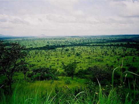 Abokouamekro Game Reserve