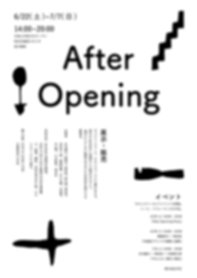 after_opening-01.png
