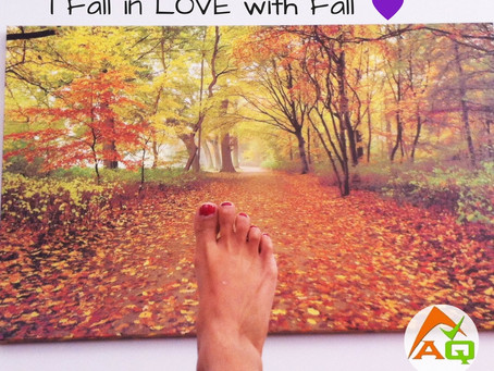 Fall - A spirit of change is in the air…