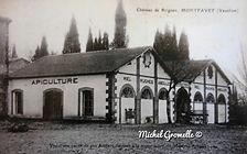 Château de Brignan Montfavet . Cartes postales anciennes. Michel Gromelle. Avignon la cité mariale.