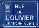 Olivier copy.jpg