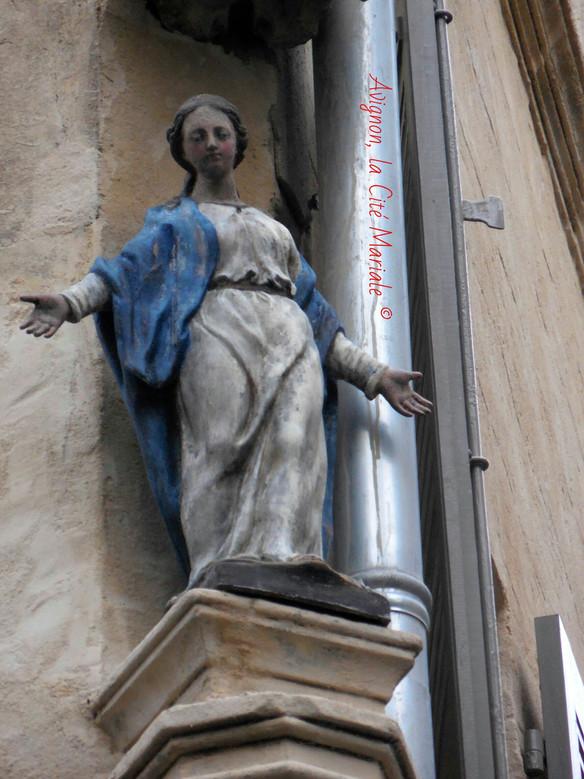 Nouvelle locataire sur Avignon