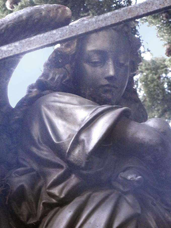 Visite de la partie protestante du cimetière saint Véran sous la conduite de M. Maynegre