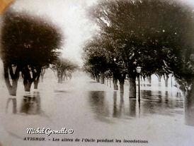 Inondations Allées de l'Oulle Avignon. Cartes postales anciennes. Michel Gromelle. Avignon la cité mariale.