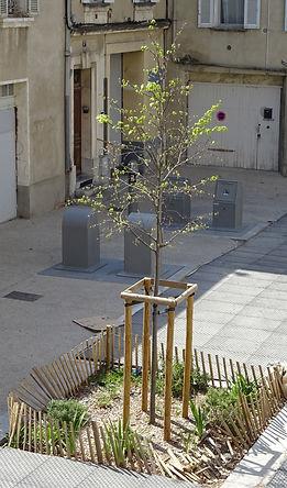 Place Etudes Arbre 060420.jpg