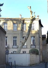 Rue Pontmartin maison.jpg