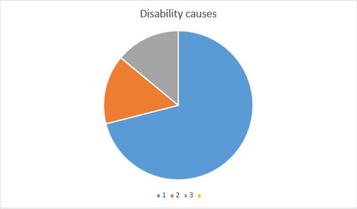Chart of main disability causes in th world