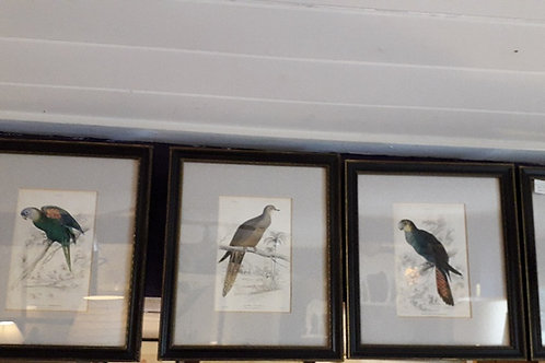 Set of 4 19th century hand coloured book plates