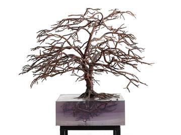 tree f.jpg