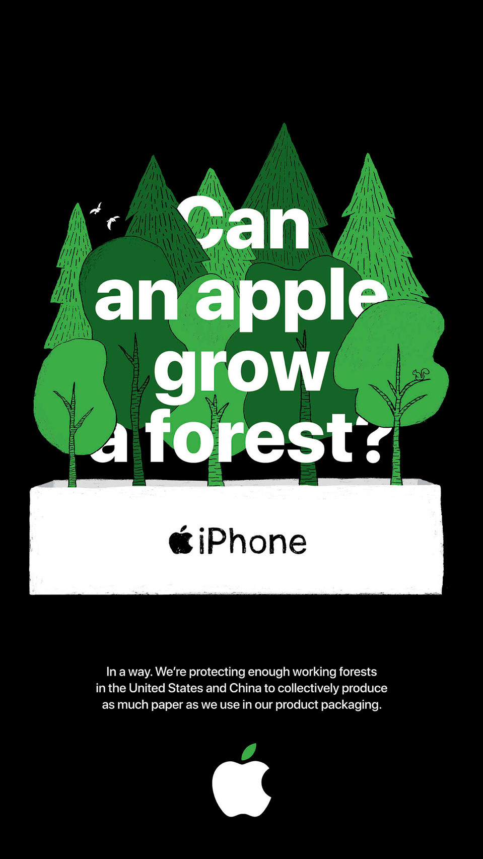 Poster_24x36_Forest_US-EN_1600_c.jpg