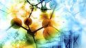 Bioquimica---Perito-bioquimico-2.jpg