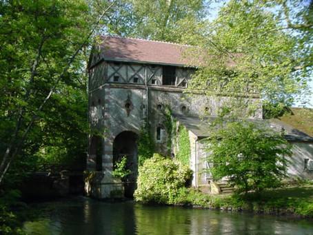 Une promenade sur les bords du Loiret