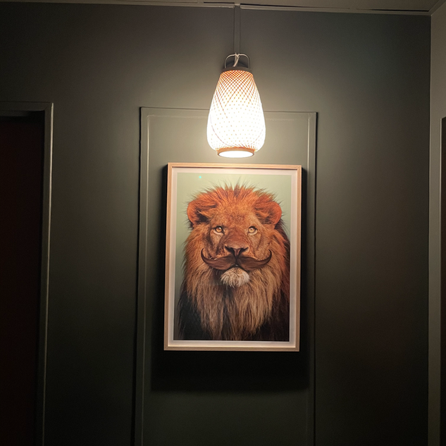 Urban Jungle Hotel Orleans #couloir / Lion Paul Fue
