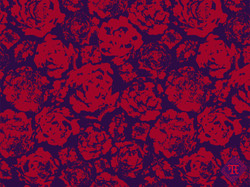 Roses purple and red