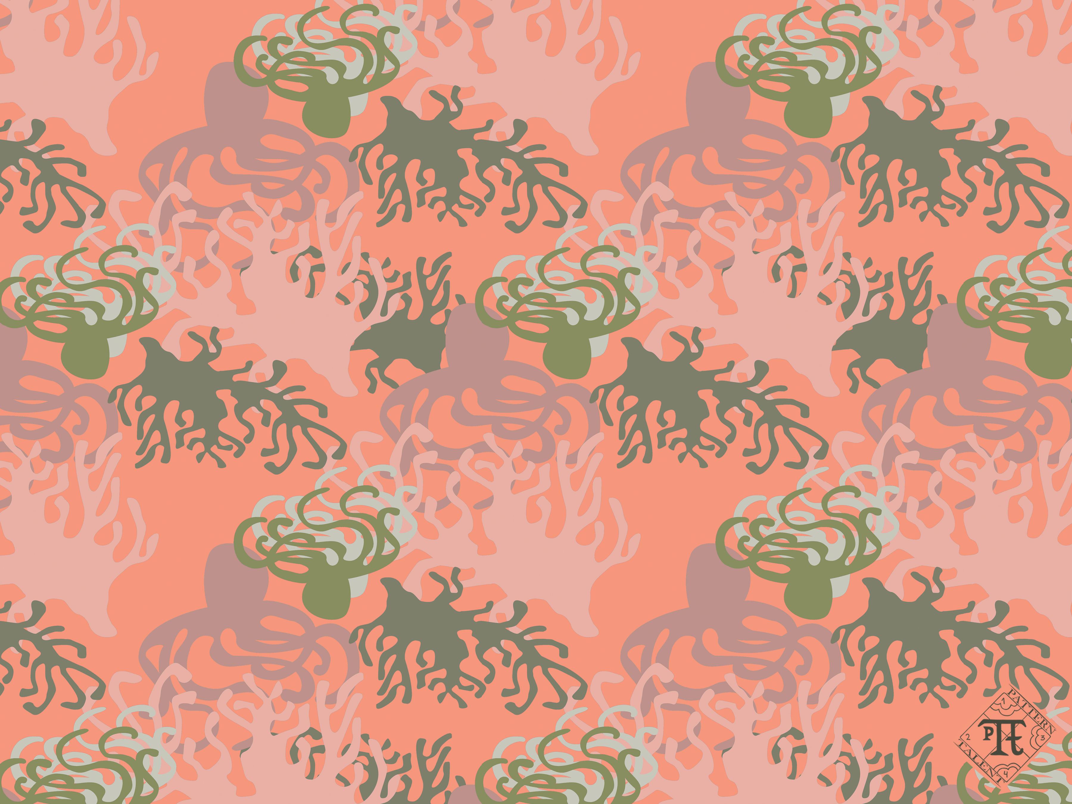 Octopus - Spring