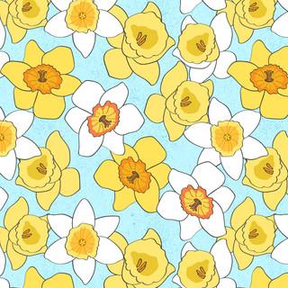 Daffodil Allover.jpg