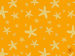 Starfish Summer