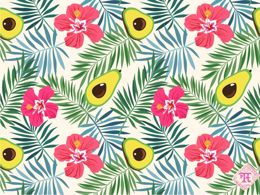Avocado in tropics