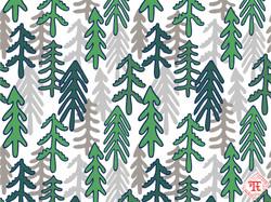 Coniferous Forest - natural