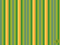 Stripe -Summer