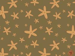 Starfish Fall
