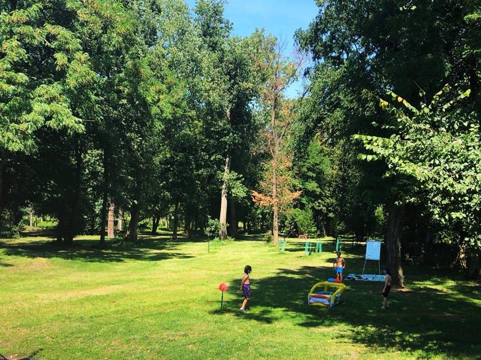 W naszym parku można poczuć wolność!