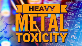 The TRUTH about Heavy Metals